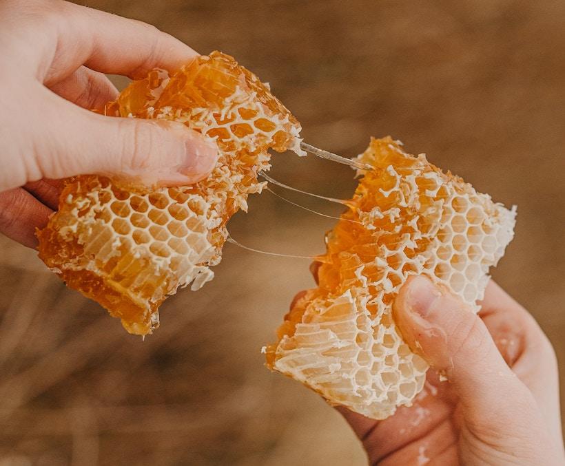 Person breaks apart a honeycomb