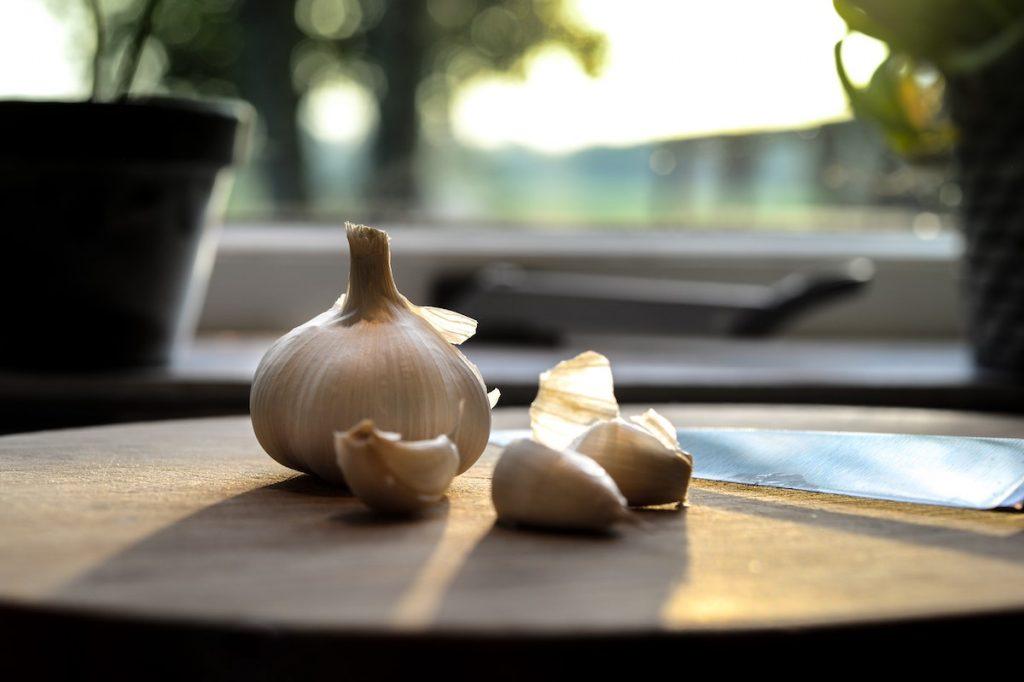 Sunlight behind a garlic bulb and cloves on a table