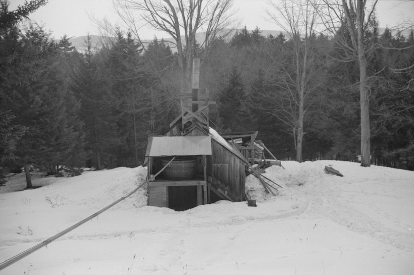 Pipeline taking sap to sugar house at Gaylord's Farm, Waitsfield, Vermont